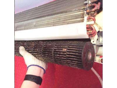 5 простых способов ограничить загрязнение воздуха внутри помещений